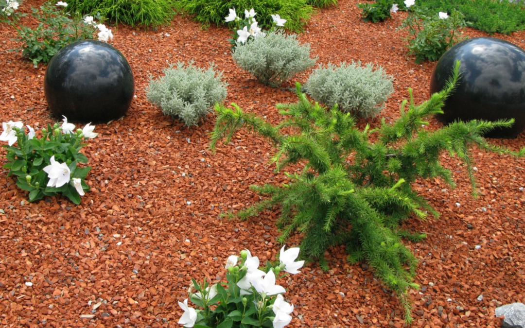 Besoin d'un paysagiste expert en création de jardin à Nancy?