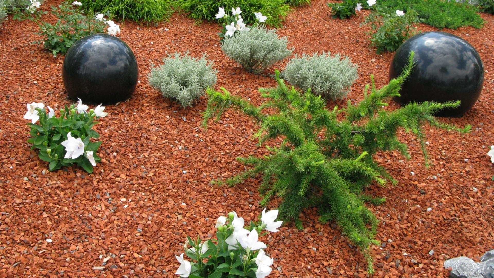 création de jardin à Nancy